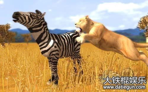 2016年云南省野生动物保护法全文实施条例解读