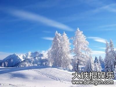 冬天的描写,描写冬天的好句好段优美句子(二)