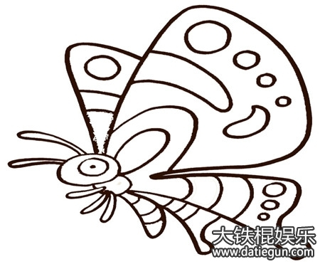 画蝴蝶的简笔画画法步骤