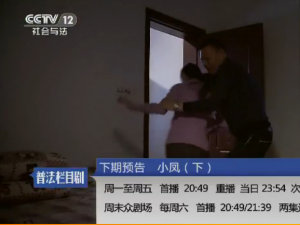 cctv12社会与法普法栏目剧小凤(下)大结局