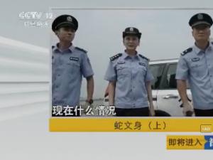 中央12套社会与法普法栏目剧蛇文身(上)